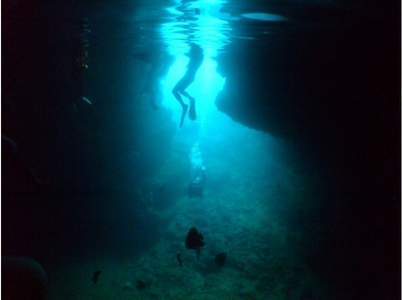 Blue cave Experience diving lowest price Muto diving (MUTOSENSUI) Recommend plan