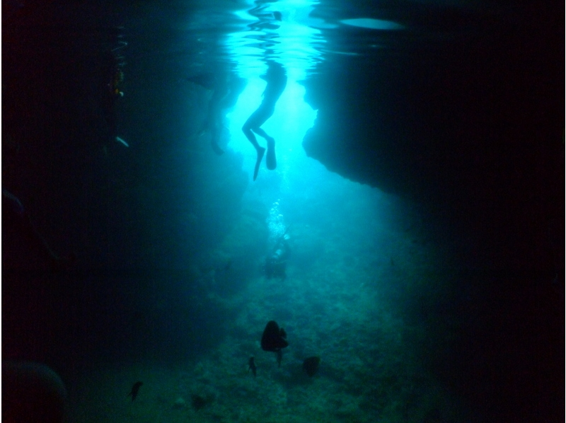 【Okinawa · Onna Village】 Blue Cave Beach Experience Diving! Introduction image of present / present on photo / video on the spot