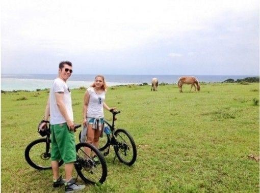 【沖縄・石垣島】手つかずの放牧地をMTBで巡る!ファームライド半日ツアー(初心者一般向け)