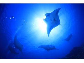 OceanStudio(オーシャンスタジオ)の画像