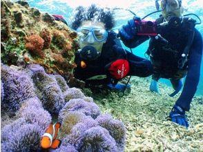 セブンオーシャンズクラブ(SEVEN OCEAN'S CLAB)の画像