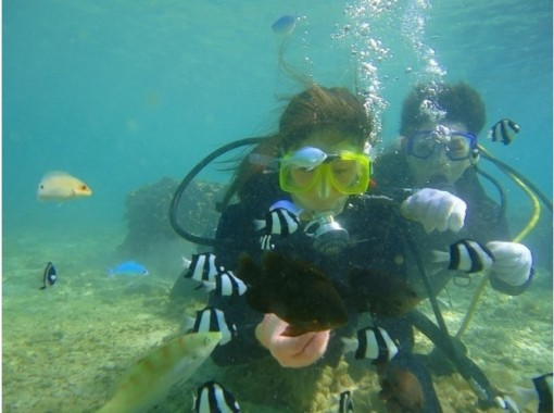 【沖縄・那覇】熱帯魚が目の前に!体験ダイビング(砂辺ポイント)