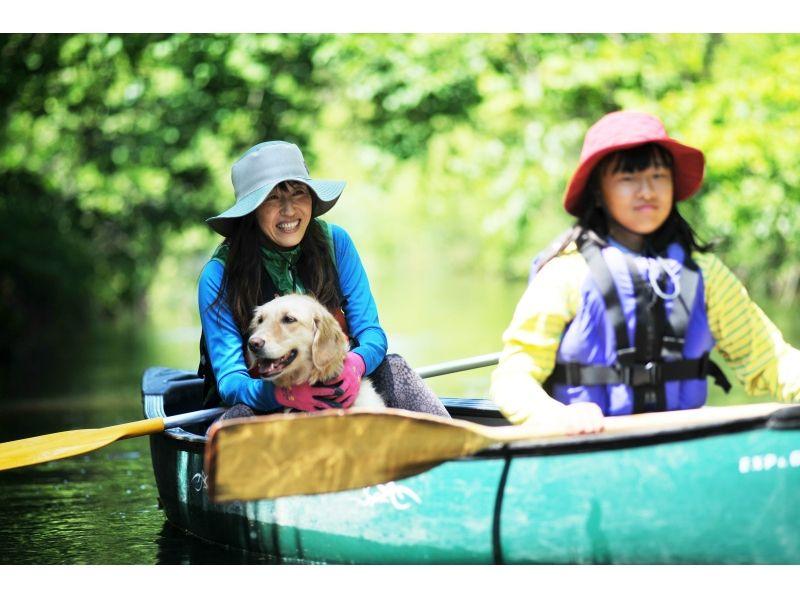 【北海道・美々川】緑が生い茂る千歳美々川!カヌーでジャングルツーリングの紹介画像