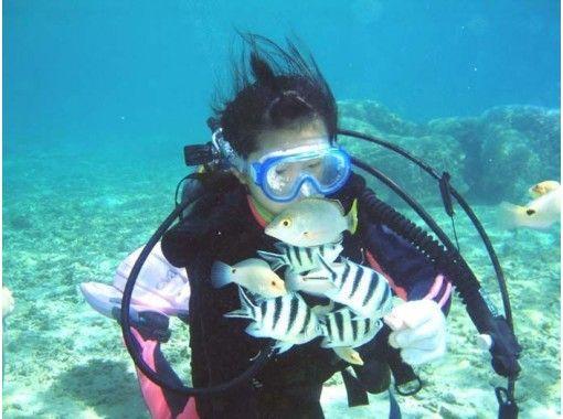 【沖縄県・南城市】無人島コマカ島で体験ダイビング(ビーチ)