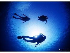 マリンサービス海夢居の画像