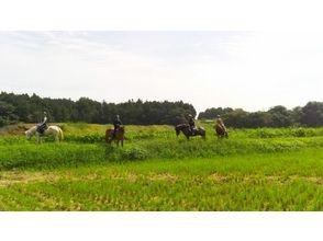 風来里馬小屋の画像