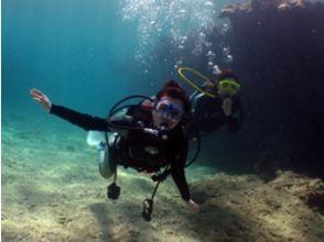 クーランマランダイビングセンター(courant marin diving center)の画像