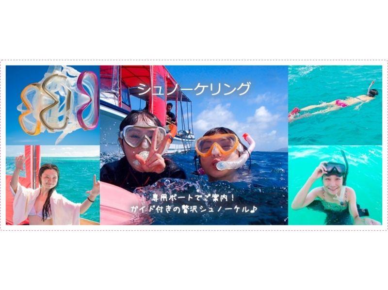 【沖縄・石垣島】 少人数でのんびりアットホーム♪石垣島でシュノーケリング!の紹介画像