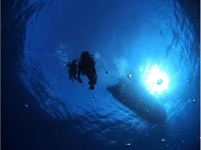 【沖縄・石垣島】石垣島の海でランクアップ♪アドヴァンスドオープンウォーターダイバーコース(2日間)の紹介画像