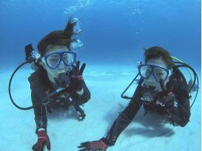 Diving Service SUNNY SUNNY(ダイビングサービスサニーサニー)の画像