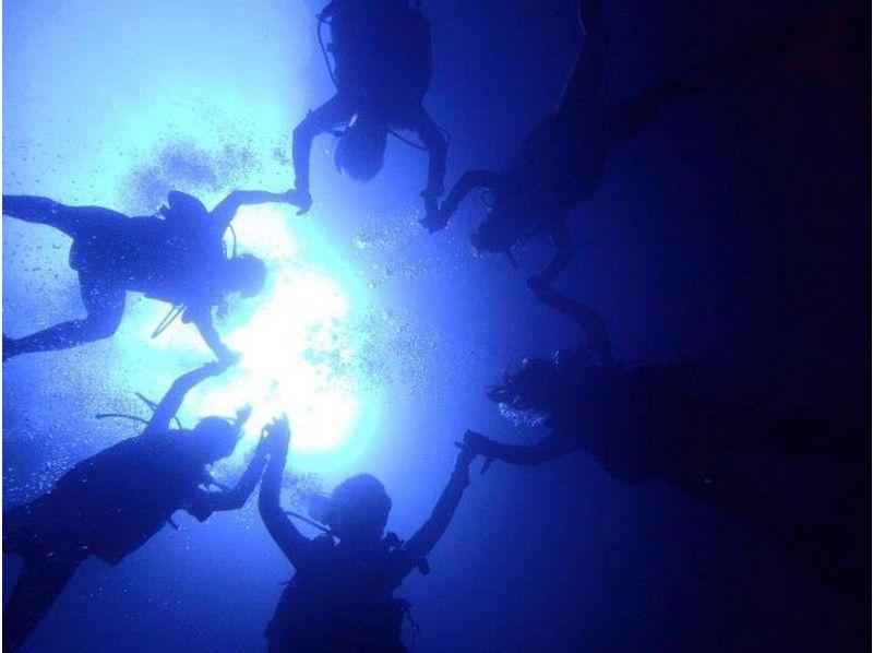 【大阪発】初心者歓迎!体験ダイビング(2ダイブ)の紹介画像