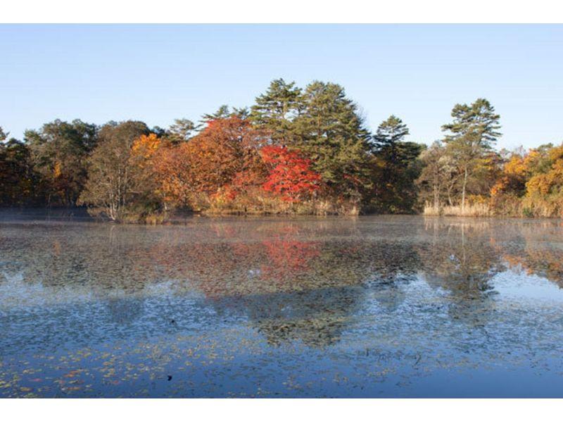 【福島・裏磐梯】大自然の中をトレッキング!レンゲ沼・中瀬沼探勝路の紹介画像