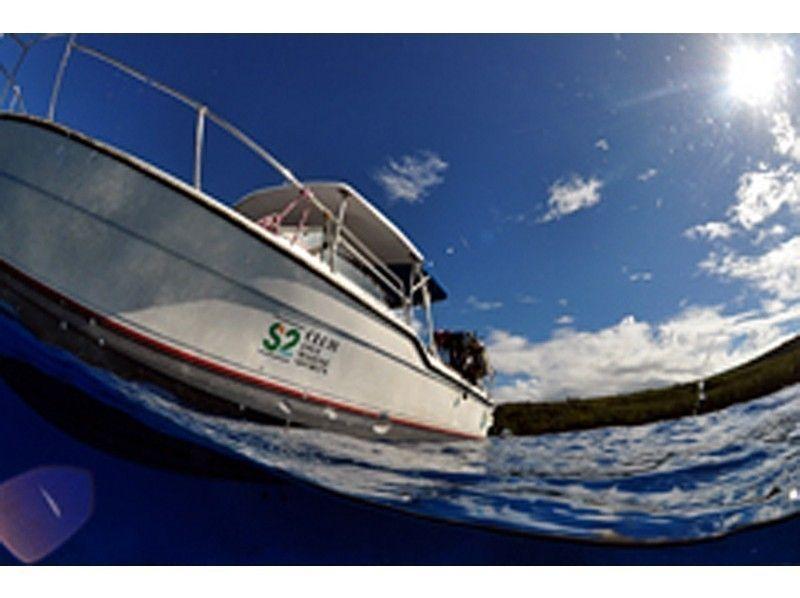 【沖縄・石垣島】初心者歓迎!石垣の海を楽しもう!体験ダイビングの紹介画像