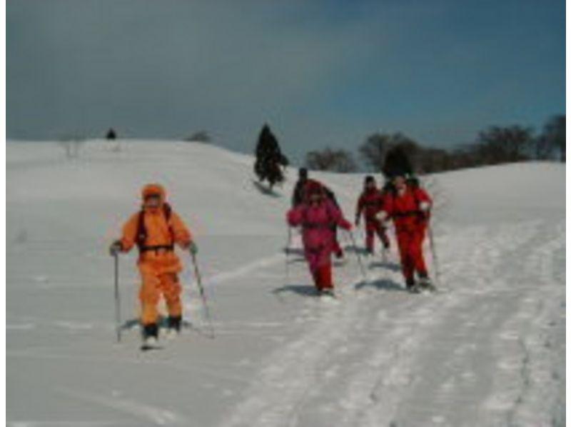 【新潟・妙高高原】スノーシュー1日体験コース。時間をかけて基礎から体験の紹介画像