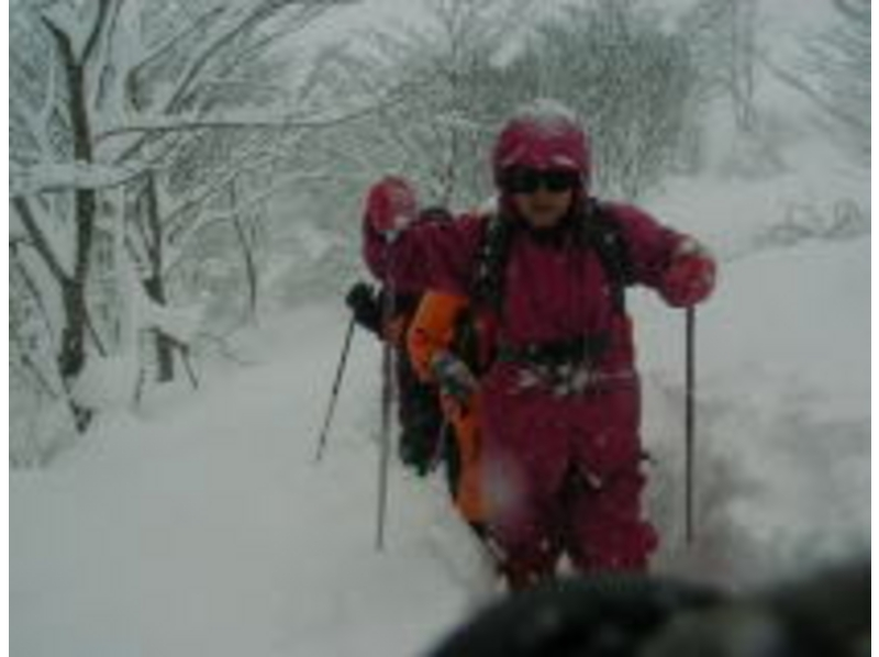 【新潟・妙高高原】本格的にスノーシューを続けたい!ステップアップコース2日間の紹介画像