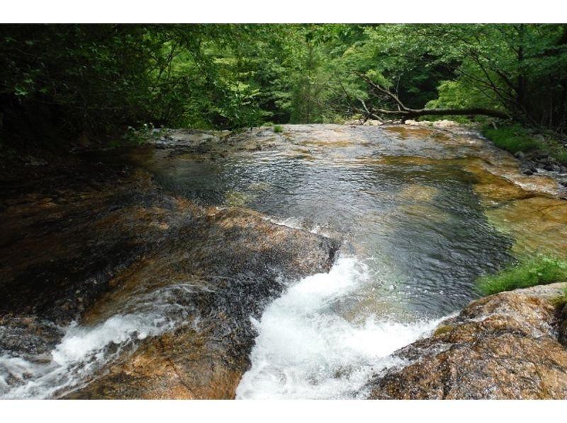 【栃木・日光】日光国立公園・霧降高原隠れ三滝シャワーウォーキング体験の紹介画像