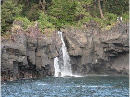 【静岡・伊東】川と海と森林の共演!城ケ崎トレッキング「海林浴コース」10才から参加OK(2名様~)