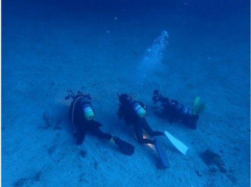 【高知県 柏島】世界の海でダイビング!一生使える認定書