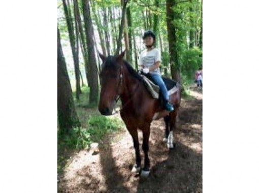 【山梨・小淵沢】野外騎乗!初めての乗馬プラン・体験プラン