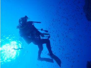 azul-marino(アズールマリノ)の画像