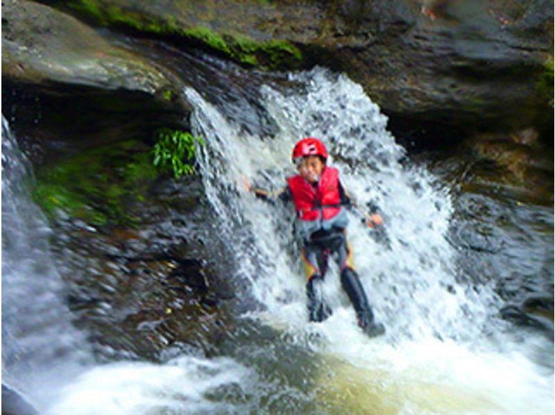【沖縄・西表島】「おおみじゃ川」ジャングルでキャニオニング(半日コース)の紹介画像