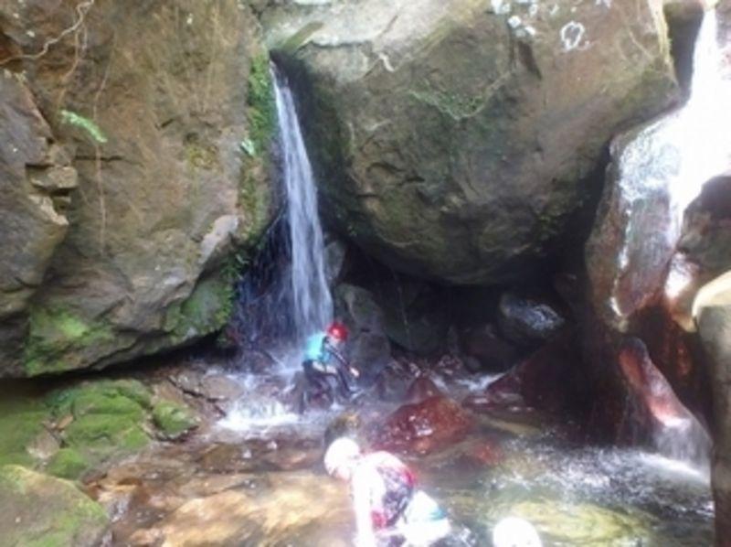 【沖縄・西表島】ユツン川沢登り!秘境リバークライミングの紹介画像