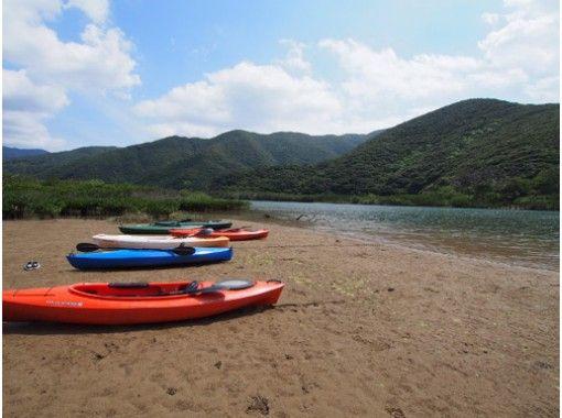 [Kagoshima-Amami Oshima] experience diving and mangrove canoe 1DAY tourの紹介画像
