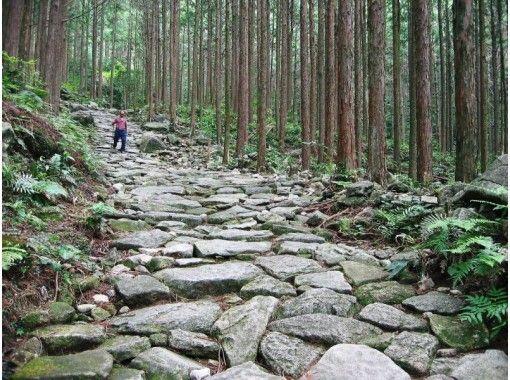 【三重・熊野】熊野古道伊勢路・馬越峠エコツアー