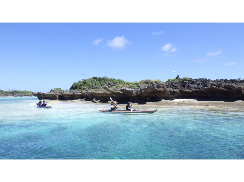 【与論島】イチオシ!シーカヤックで無人島上陸!カクレクマノミを見よう!(百合ヶ浜ツアーも選択可能!)の紹介画像