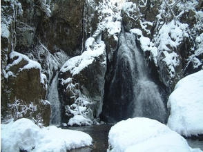 蒜山ツアーデスクの画像