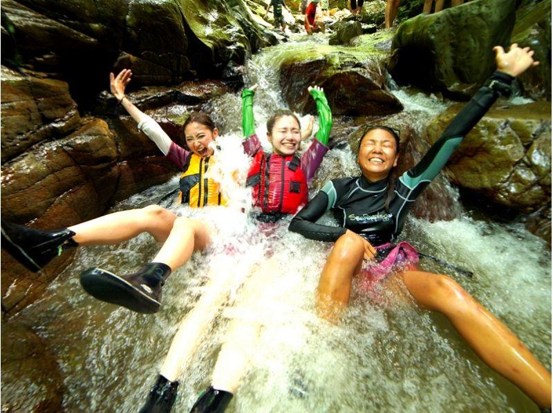 【沖縄・やんばるの森】童心に返って大冒険!ウォータージャングルアドベンチャーの紹介画像