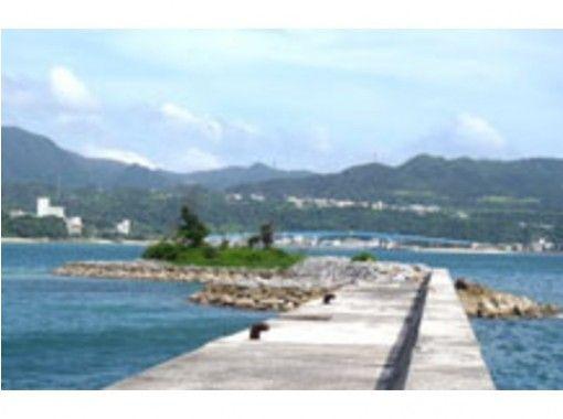 【沖縄・国頭】イカダの揺れが心配な方には安心!防波堤釣りコース!