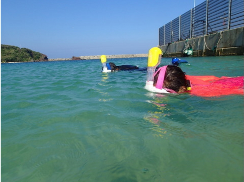 【山口・萩】体験ダイビング 山口県最北の離島で黒潮へダイブの紹介画像