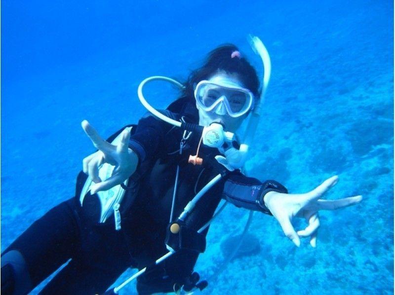 【東京都・池袋】東京から日帰り!伊豆半島で体験ダイビング!の紹介画像