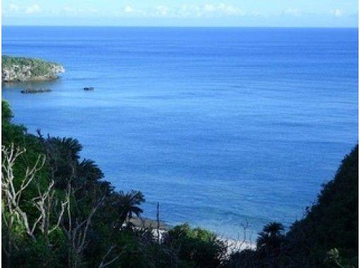 【鹿児島・沖永良部島】B.浜巡りコース「海岸線散歩・奇岩やウミガメビューポイント紹介」車移動でご案内