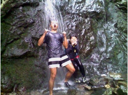 【四国・徳島】無人島へ冒険SUPクルージング! 無人島の滝や森は、まるで「もののけ姫」の世界