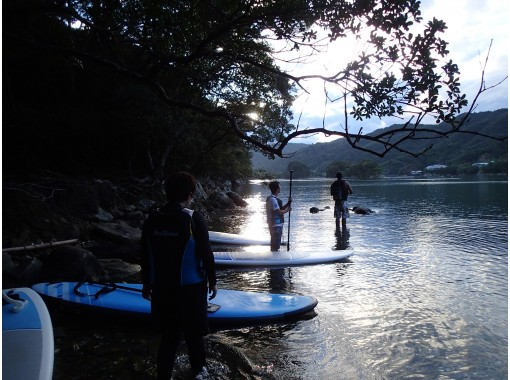 【四国・徳島】無人島へ冒険SUPクルージング! 無人島の滝や森は、まるで「もののけ姫」の世界の紹介画像