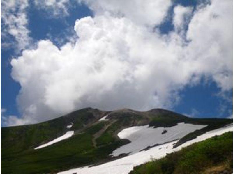 乗鞍高原ネイチャートレッキング 1日ツアーの紹介画像