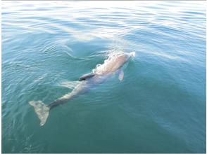 天草漁業協同組合 五和支所の画像