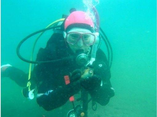 【静岡・沼津】誰でも手軽に海中散歩!初心者でも安心の体験ダイビング