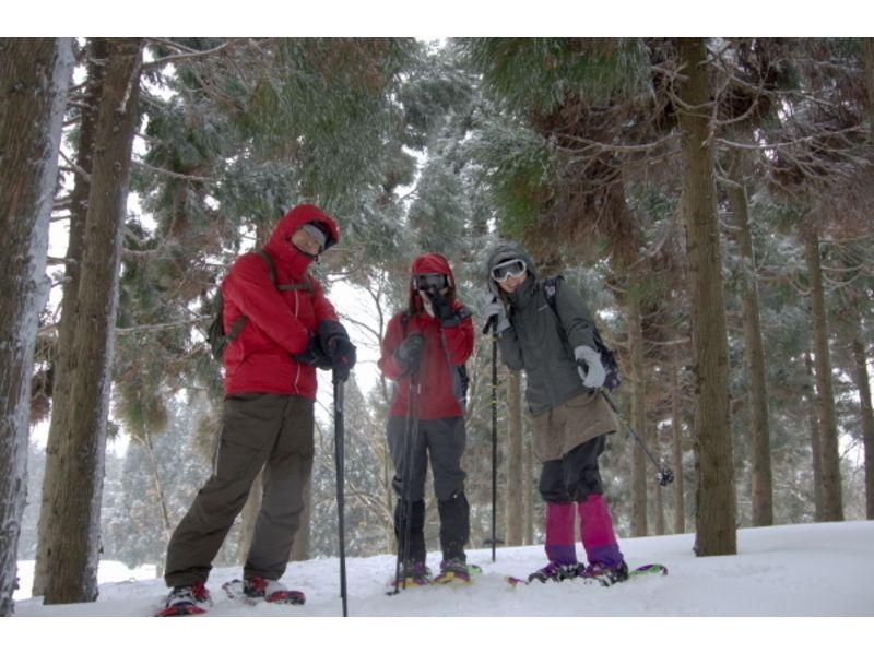 【滋賀・山門湿原】自然豊かな湿原を散策!スノ―シュートレッキング体験(半日コース)の紹介画像