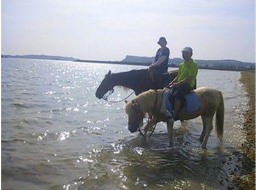 【沖縄・宮城島】Go to 地域共通クーポン利用可  馬に乗ってビーチをのんびり散歩しよう!ビーチ乗馬(60分コース)
