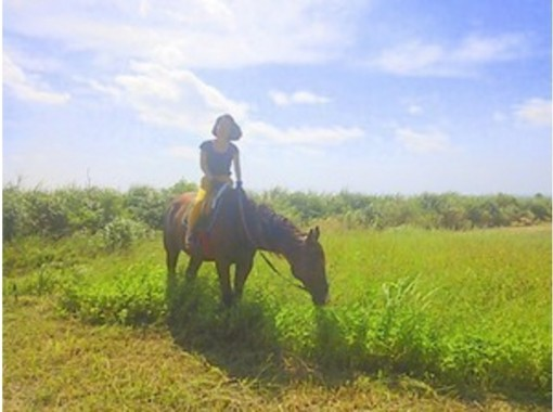 【沖縄・宮城島】Go to 地域共通クーポン利用可  森林を楽しく散歩しよう!林トレッキング乗馬(60分コース)