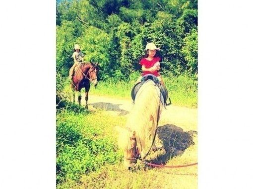【沖縄・宮城島】乗馬しながら山登り!山歩き乗馬(90分コース)