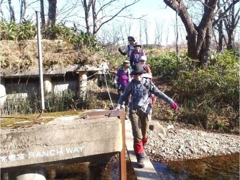【北海道・旭川】大雪山や北海道の百名山を歩こう!日帰りトレッキングの紹介画像