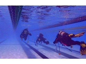 Diving School Running Bird(ランニングバード)の画像