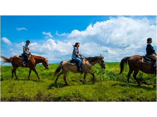 [Kumamoto Aso] 360 degrees of riding experience of large panorama! Indian course (about 20 minutes)の紹介画像