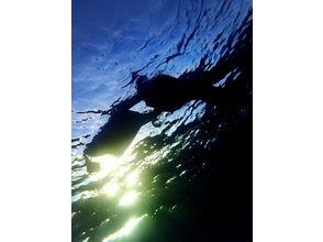 Sea drop(シードロップ)の画像