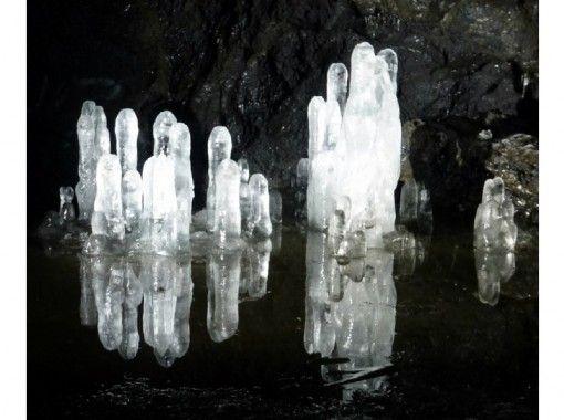 【山梨・河口湖】Aコースのバ-ジョンアップ版!青木ケ原樹海・洞窟探検「プレミアムBコース」10才~の紹介画像