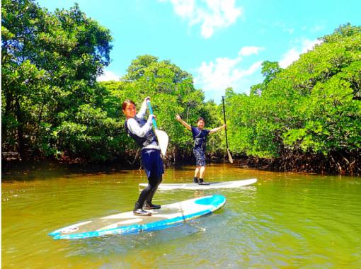 【西表島】水牛車で人気の観光名所へa7.マングローブSUP・カヌー×秘境パワースポット巡り&由布島観光コース【ツアー写真データ無料】